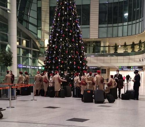 Встреча в аэропорту Домодедово
